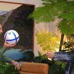 El millonario socialista: ¿Qué herencia deja el astro argentino Diego Maradona?