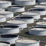 Precio del petróleo a la alza: por primera vez desde abril de 2019 llega a $73 barril