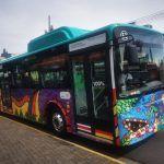 Coloridos buses eléctricos ahora tendrán ruta entre San José y Alajuela
